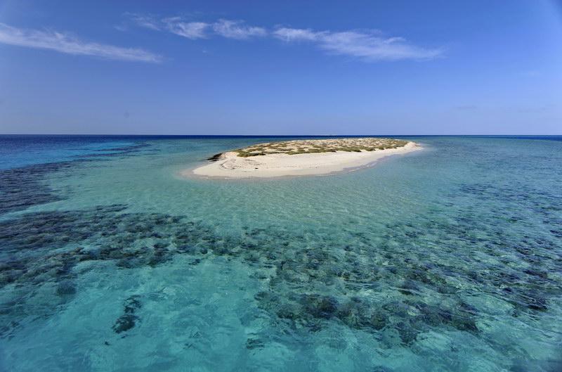 Wadi_el_Gemal_coast_49
